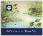 Shell Guide to the Water's Edge.  (East Africa)