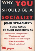 Why You should be a Socialist: A Terse Guide to such Questions as: What causes unemployment? What makes booms and slumps? What causes war? What is capitalism? What is socialism.